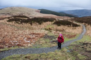 Walker on the restored footpath on Gowbarrow Fell