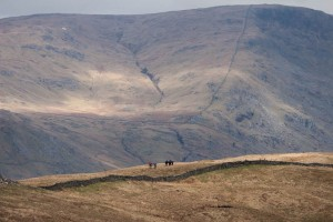 Walkers on Sour Howes ridge